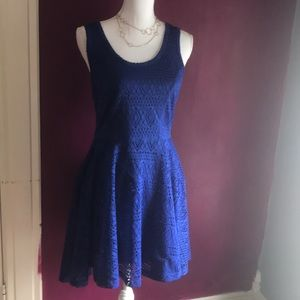 Lacy fit and flare Express dress